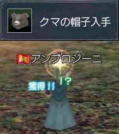 クマクエ完了^▽^.JPG