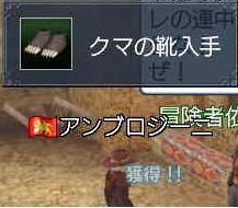 クマクエ~2.JPG